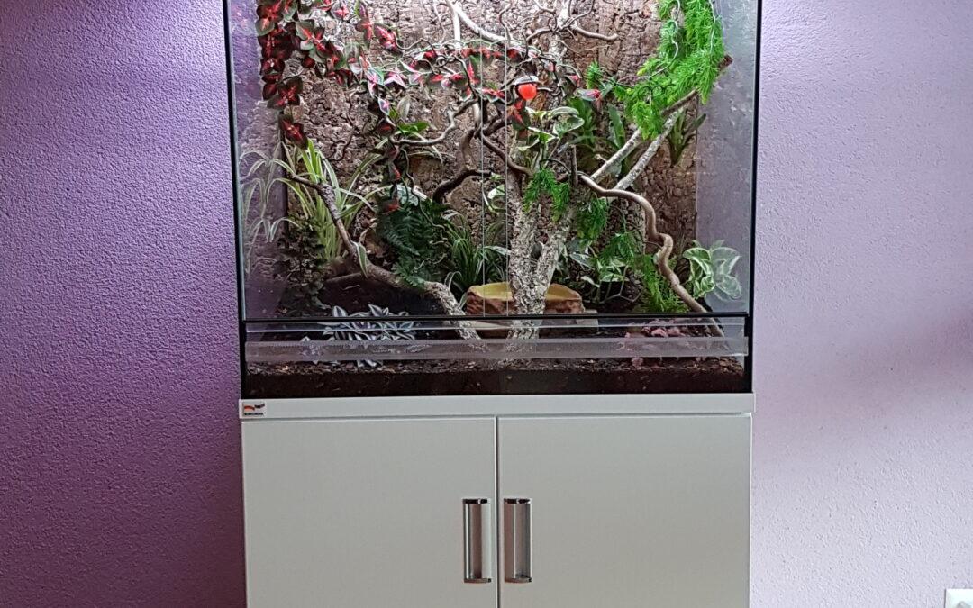 Terrarium 80x60x80cm mit Schrank und Abdeckhaube