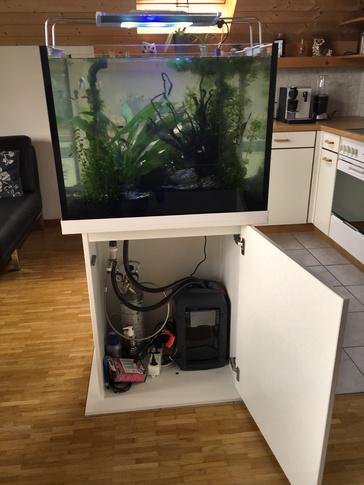 Freistehendes Aquarium in Wohnküche