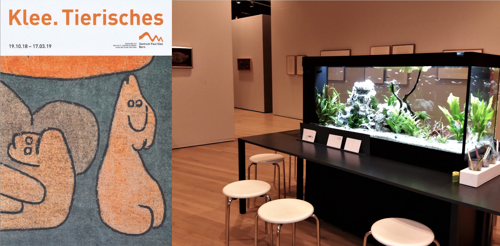 Im Zentrum Paul Klee in Bern