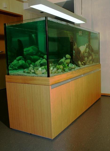 Aquarium für Malawi-Barsche Altersheim dahlia Zollbrück