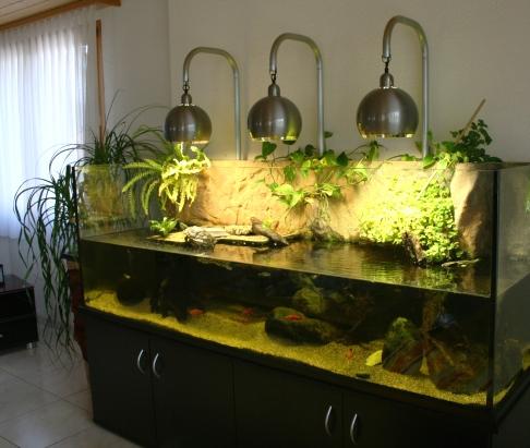 Schildkrötenaquarium